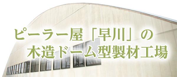 ピーラー屋「早川」の木造ドーム型製材工場
